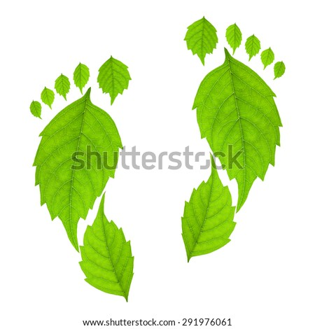 Footprint from leaves isolated on a white background. Eco concept. - stock photo
