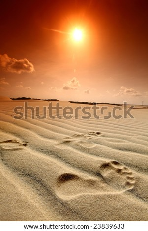 footprint in desert - stock photo