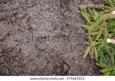Footprint in the dirt. Brown road dirt with footprints. Background photo texture.  Foot mark on the jungle trail. shoeprints in the mud. Dirt field close up background. needle branches