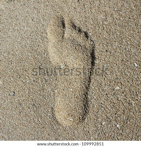 Footprint in the Sand - stock photo