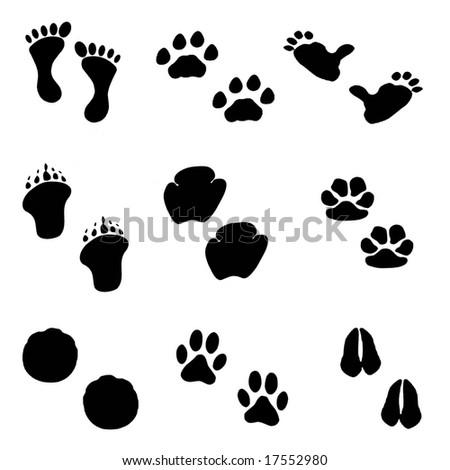 Footprint set - stock photo