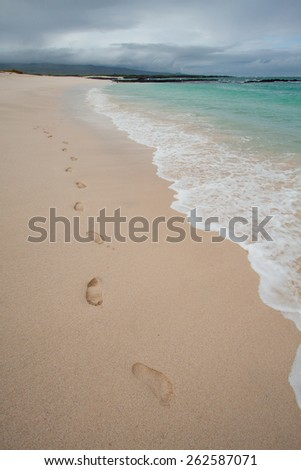 Footprints along beautiful beach shore, Galapagos Islands, Ecuador - stock photo