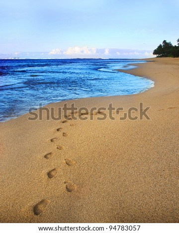 Footprints are seen in the sand of a deserted beach, with a beautiful blue sky, ocean, and tropical foliage in the background.  Copy space. - stock photo