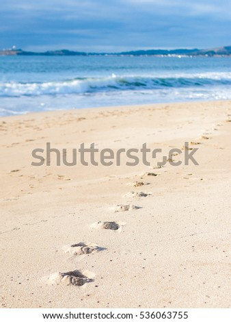 Footprints at the West Coast