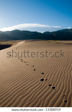 footprints going across the sand in the early morning - stock photo
