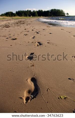 Footprints in sand by seaside - stock photo