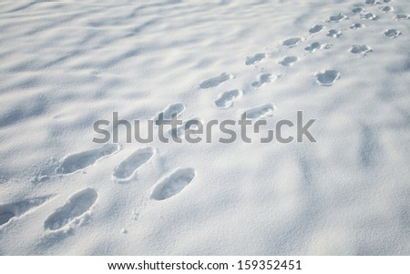 Footprints in snow on snowy meadow. - stock photo