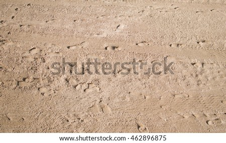 Footprints in the beach sand.