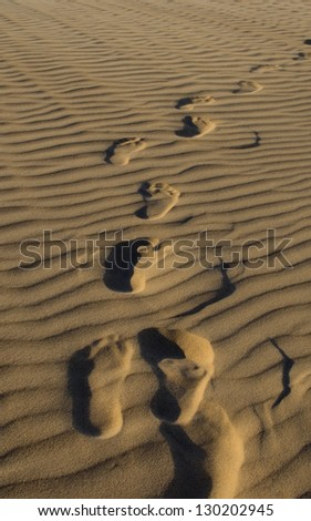 footprints in the sand - stock photo