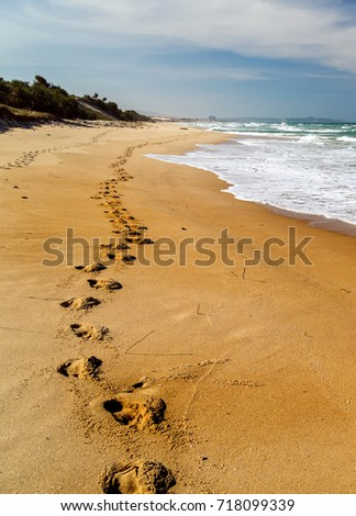 Footprints in the sand beach, Long road in dune