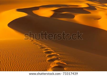 Footprints in the sand dunes at sunset - Murzuq Desert, Sahara, Libya - stock photo