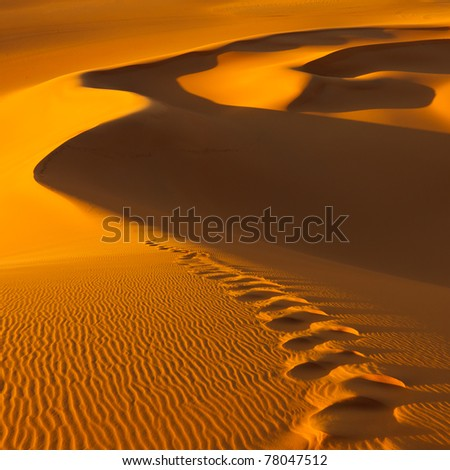 Footprints in the sand dunes at sunset - Murzuq Desert, Sahara, Libya - stock photo