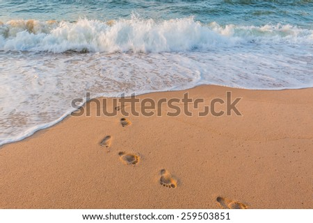 Footprints in the Sand for background - stock photo