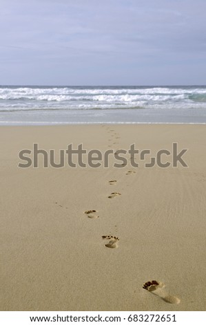 Footprints in the sand, Fuerteventura, Canary Islands, Spain, Europe