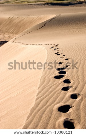 footprints in the sand going up a sand dune