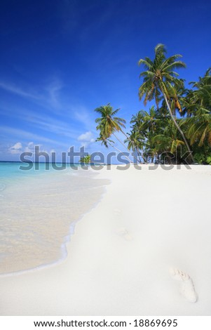 footprints in the sand, Maldives - stock photo