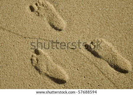 Footprints in the sand on a beach - stock photo