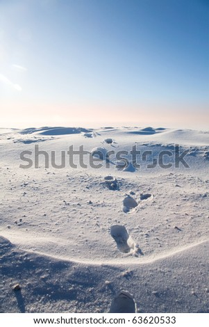 Footprints in the snow in the icy wilderness