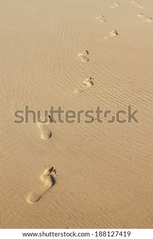 Footprints in the wet sand - stock photo