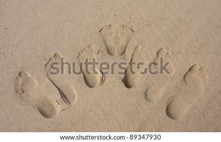 Footprints of a family in the sand on beach group imprint - stock photo