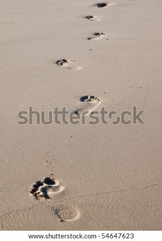 Footprints on a beach in wet sand - stock photo