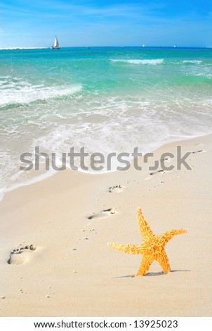Footprints on beach by starfish with sailboats in distance - stock photo