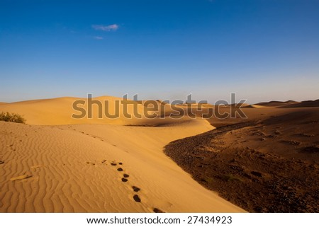 footprints on desert dunes under blue sky - stock photo