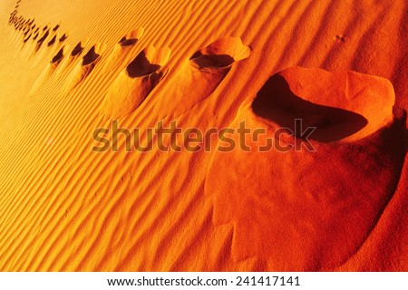 Footprints on sand dune, Sahara Desert, Algeria  - stock photo