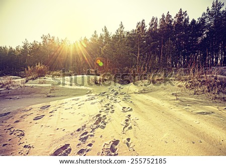 Footprints on sand, retro stylized nature background with flare effect. - stock photo