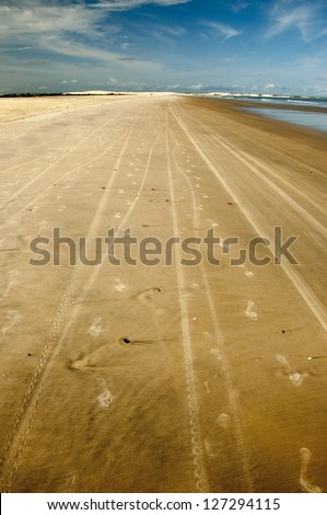 Footprints on the sand. Northeast of Brazil.