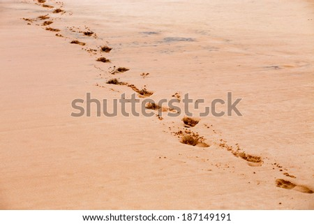 Footprints on the sand of the tropical beach - stock photo