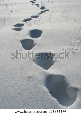 Footprints on the snow