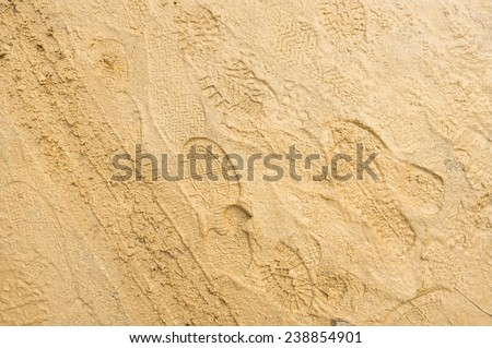 Footprints On Wet Sandy Soil Stock Photo (100% Legal Protection ...