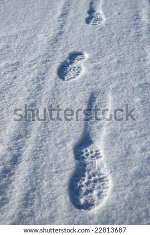 Footprints through fresh snow - stock photo