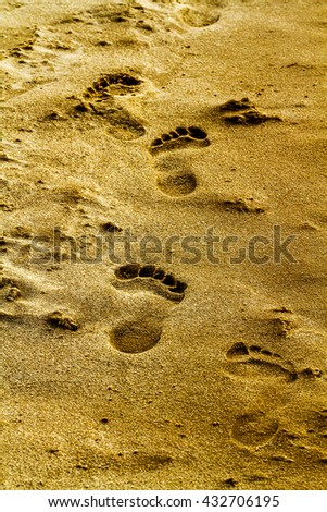 Foots and trail on sand
