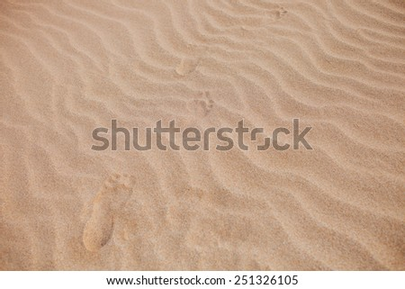 footstep track on sand  the coral sandy beach - stock photo
