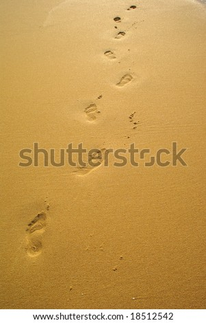 Footsteps on a sunny tropical beach away - stock photo
