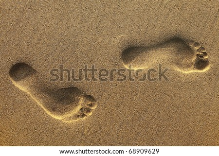 footsteps on beach in sandy - stock photo