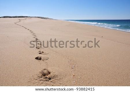 Footsteps on desert beach - stock photo