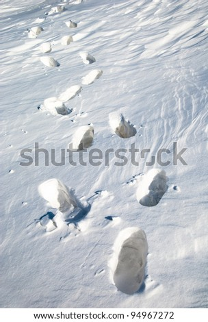 Footsteps on the snow.The Kazakhstan steppe. - stock photo
