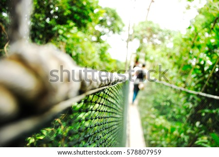 For Background Canopy Walk