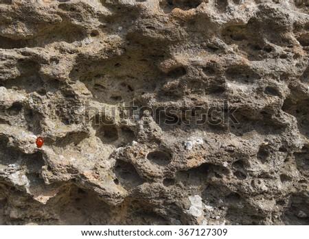 For millennia, weathered sandstone surface in ancient Chersonesos. Seacoast. Crimea, Sevastopol. - stock photo