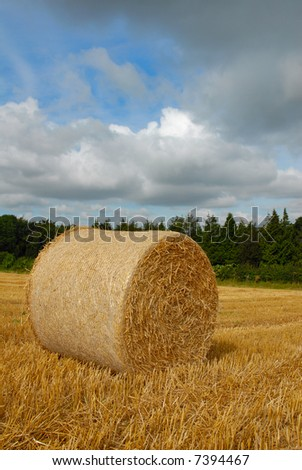 foreground harvested straw bale on farmland with stormy clouds, vertical