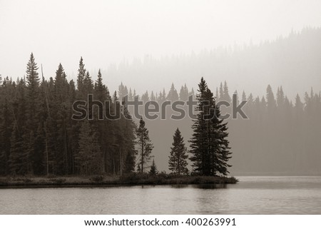 Forest and lake in a foggy day in Banff National Park - stock photo