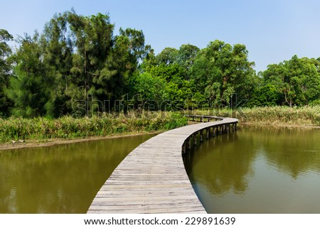 Forest and lake with wooden path - stock photo