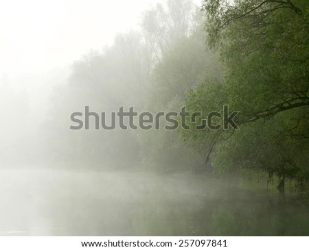 Forest and river at spring - stock photo
