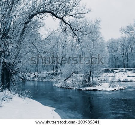 forest and snow-covered trees along the banks of the river does not freeze, winter season