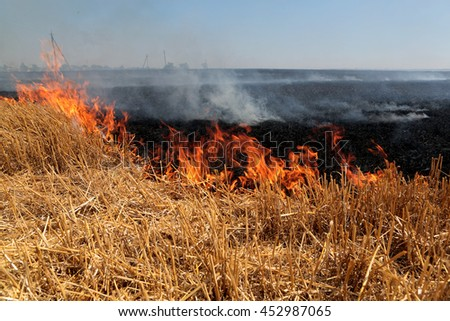 Forest and steppe fires dry completely destroy the fields and steppes during a severe drought. Disaster brings regular damage to nature and economy of region. Lights field with the harvest of wheat - stock photo