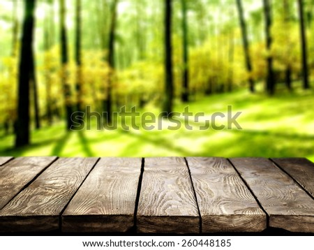 forest and table  - stock photo