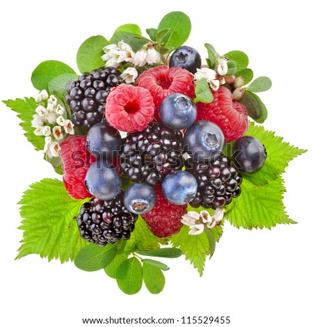 forest berries with flower  isolated on a white background - stock photo